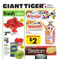 Giant Tiger - Weekly Flyer